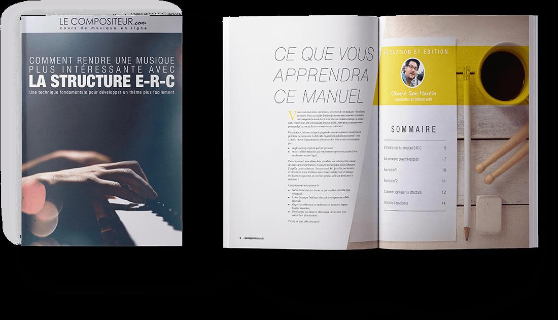 Image du PDF : La Structure ERC